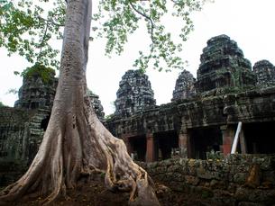 カンボジア シェムリアップ バンテアイ・クディの写真素材 [FYI03878238]