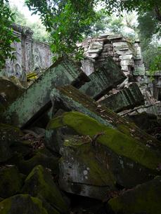 カンボジア シェムリアップ タ・プロームの写真素材 [FYI03878241]