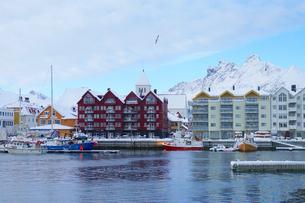 Norway スヴォルバーグ港の眺めの写真素材 [FYI03878456]