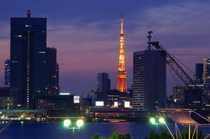 ライトアップされた東京タワーの写真素材 [FYI03878478]