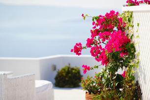 サントリーニ島イアのホテルの写真素材 [FYI03878537]