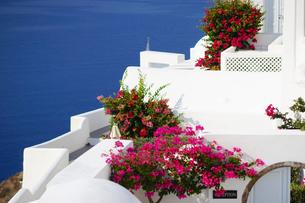 サントリーニ島イアのホテルの写真素材 [FYI03878543]