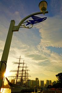 海王丸が停泊する晴海埠頭の写真素材 [FYI03878640]