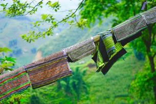 ラオチャイ村民芸品 製作過程の写真素材 [FYI03878699]