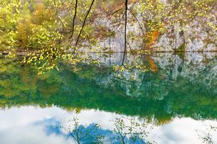 秋のプリトヴィッツェ湖群国立公園の写真素材 [FYI03878819]