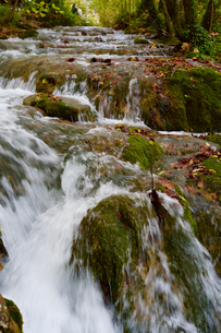 クロアチア プリトヴィッツェ湖郡国立公園の写真素材 [FYI03878822]