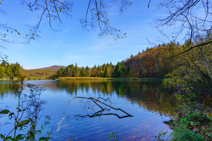 秋のプリトヴィッツェ湖群国立公園の写真素材 [FYI03878823]
