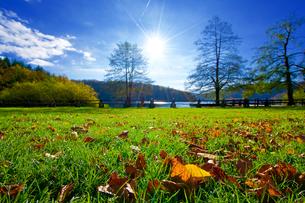 秋のプリトヴィッツェ湖群国立公園の写真素材 [FYI03878827]