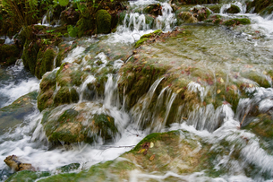 プリトヴィッツェ湖群国立公園の滝の写真素材 [FYI03878829]