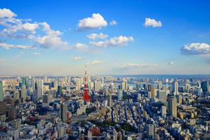 東京タワーと東京の風景の写真素材 [FYI03878893]