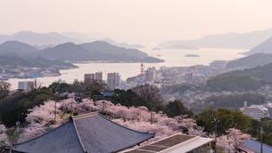 桜満開の尾道夕景の写真素材 [FYI03878937]