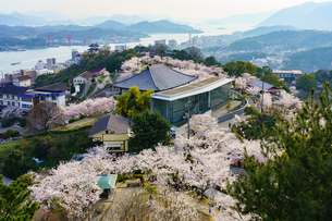 桜満開の尾道の写真素材 [FYI03878946]