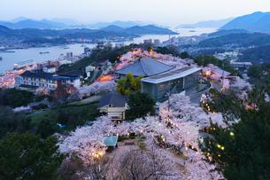 尾道の満開の桜と尾道水道の写真素材 [FYI03878950]