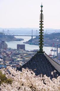天寧寺と桜と尾道水道と尾道大橋の写真素材 [FYI03878952]
