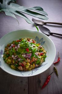 ヤムマクワ(ナスのサラダ)タイ料理の写真素材 [FYI03879128]