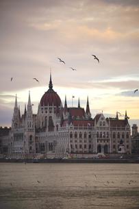 ハンガリー国会議事堂朝景の写真素材 [FYI03879159]