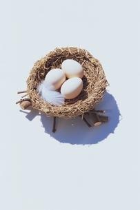 巣の中の3つのタマゴの写真素材 [FYI03880020]