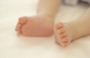 赤ちゃんの足の写真素材 [FYI03880722]