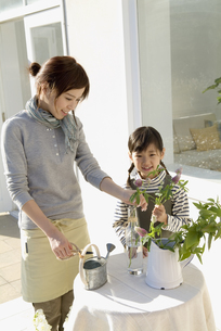 花瓶に花を生ける母と娘の写真素材 [FYI03881323]