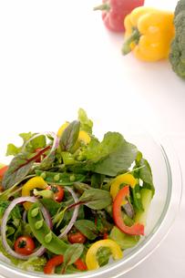 野菜サラダの写真素材 [FYI03881467]