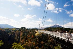 九重夢大吊橋の写真素材 [FYI03881903]