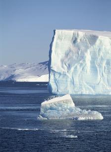 氷山の上のペンギンの写真素材 [FYI03882256]