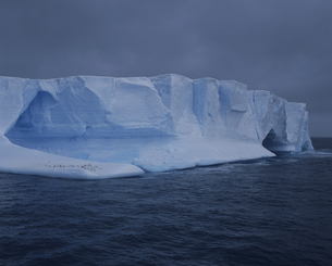 氷の上のペンギンの写真素材 [FYI03882265]