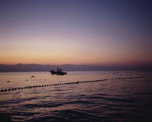 早朝の定置網漁の写真素材 [FYI03882333]