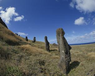 モアイ像 イースター島の写真素材 [FYI03882394]