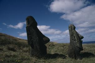 モアイ像 イースター島の写真素材 [FYI03882396]