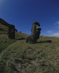 モアイ像 イースター島の写真素材 [FYI03882398]