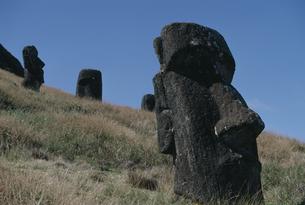 モアイ像 イースター島の写真素材 [FYI03882399]