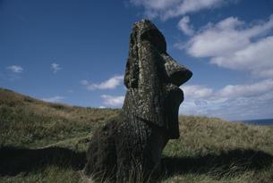 モアイ像 イースター島の写真素材 [FYI03882401]