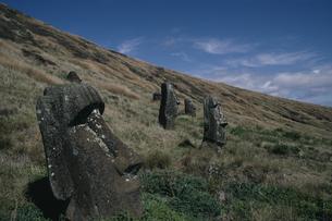 モアイ像 イースター島の写真素材 [FYI03882406]