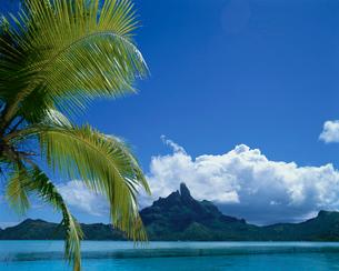 タヒチのボラボラ島の写真素材 [FYI03882559]