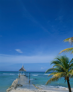 ジャマイカのハーフムーンビーチの写真素材 [FYI03882590]