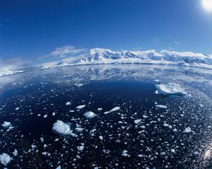 海面に浮かんだ氷の写真素材 [FYI03882611]