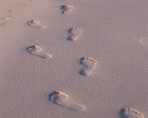 砂浜の上の足跡の写真素材 [FYI03882707]