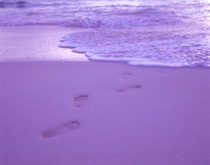 波打ち際の足跡の写真素材 [FYI03882971]