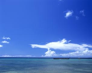 沖縄本島のビーチの写真素材 [FYI03882994]