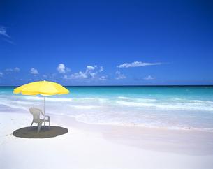 ビーチの黄色いパラソルとイスの写真素材 [FYI03883102]