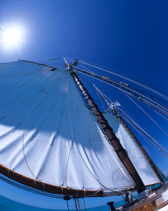 帆船のセールの写真素材 [FYI03883189]