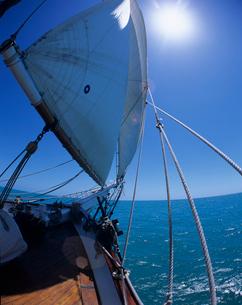 帆船の船首の写真素材 [FYI03883191]