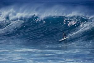 サーフィンの写真素材 [FYI03883299]