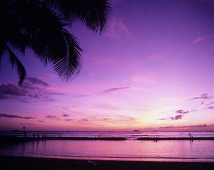ワイキキビーチの夕景の写真素材 [FYI03883408]
