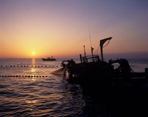 早朝の定置網漁 富山湾の写真素材 [FYI03883533]