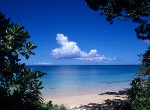 海と雲 石垣島の写真素材 [FYI03883555]