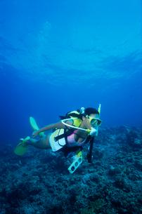女性ダイバー モルディブの写真素材 [FYI03883786]