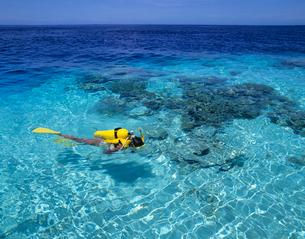 水面を泳ぐ女性ダイバー モルディブの写真素材 [FYI03883804]