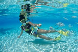 女性ダイバー モルディブの写真素材 [FYI03883823]